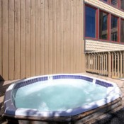 Atrium Hot Tub- Breckenridge