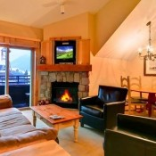 Living Room  in One Bedroom