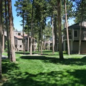 Pinegrove Townhomes