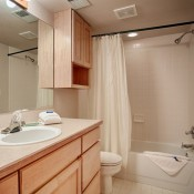 Village Point Townhomes Bathroom  -Breckenridge