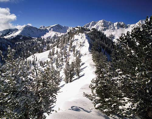 Salt Lake Region Picture