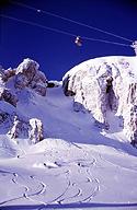 Jackson Hole Picture 4