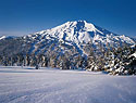 Mt Bachelor Picture 2